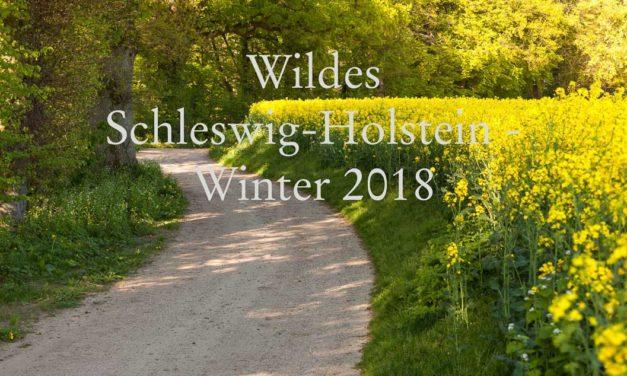 Wildes Schleswig-Holstein Ausgabe Herbst -Winter 2018