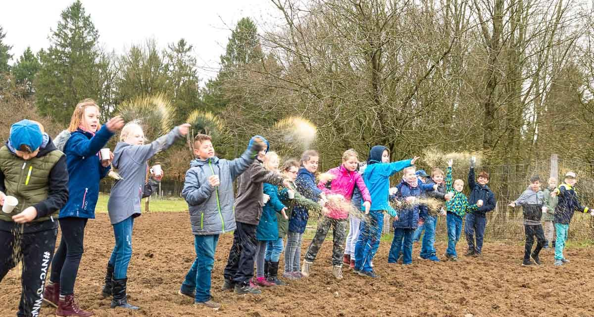 Da blüht uns was! Im Erlebniswald Trappenkamp säten Trappenkamper Grundschüler gegen das Artensterben.